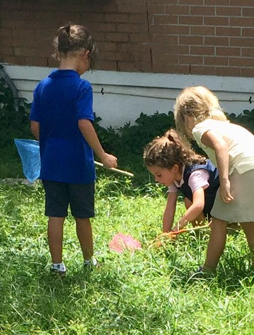 Three students in the school field with butterfly nets looking at bugs