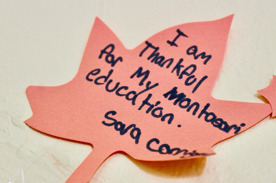 Maple leaf shape cut paper with quote from student - I am thankful for my Montessori education