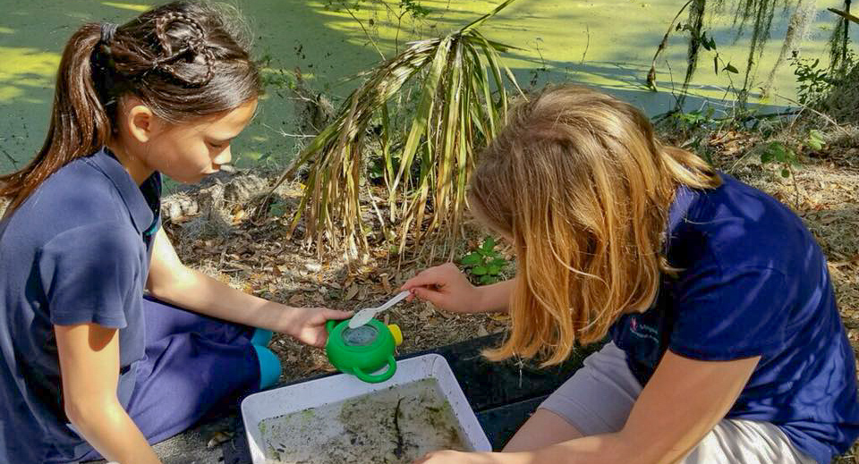 Two students collect and study water samples from a marsh