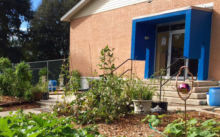 Back of school showing the student garden